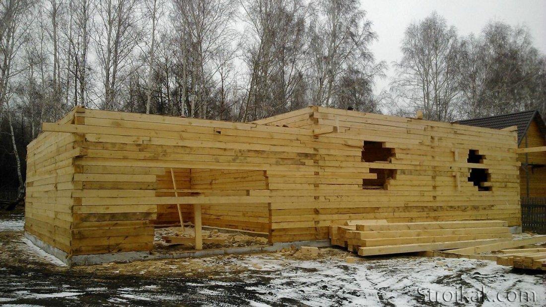 Свойства древесины - от чего они зависят