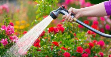 Чистая вода для полива